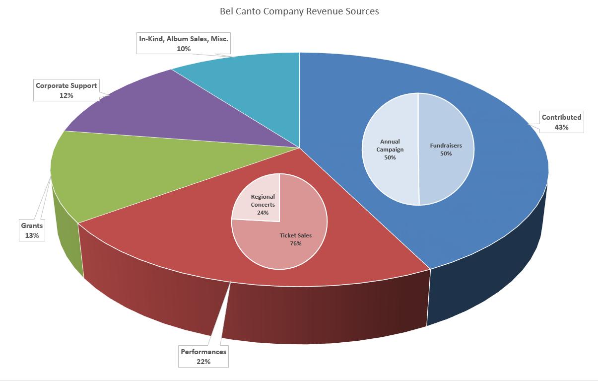 Bel Canto Company Annual Revenue Chart